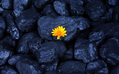 La cita de los carboneros esta tarde en Paipa